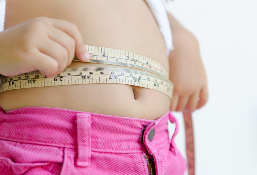 high protein ketogenic diet