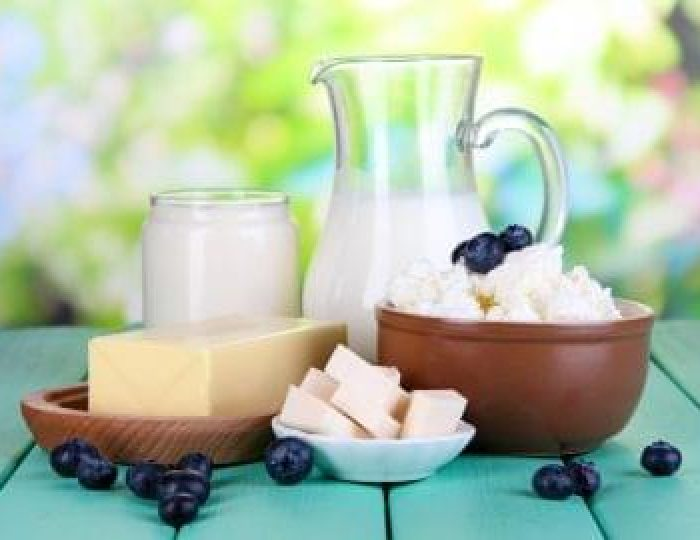 Fresh-dairy-products-with-blueberry-are-examples-of-keto-fat-sources